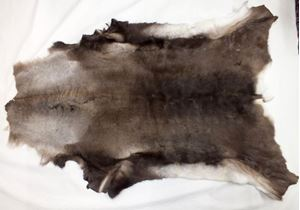 Picture of Norwegian Deer skin rug